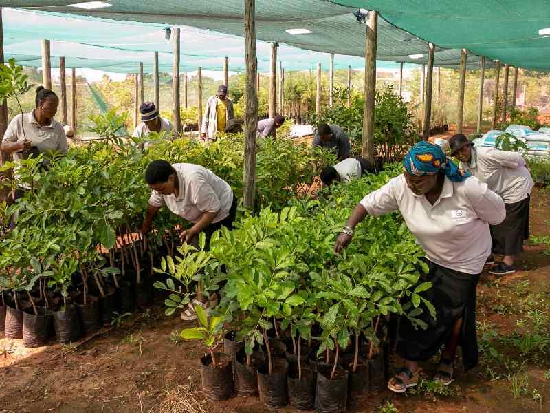 Sustainable Communities Planning