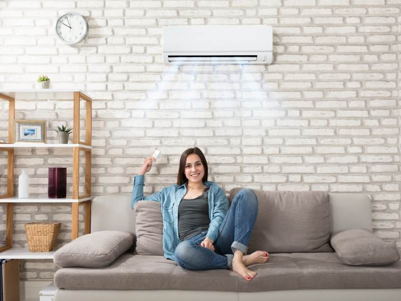 Black Mold In Air Conditioners
